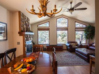 LUXURIOUS HOME AMONGST THE PINES - Pagosa Springs vacation rentals