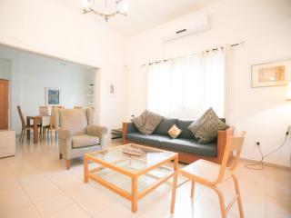 Ahad Am Habima Rotshild City Center - Tel Aviv vacation rentals