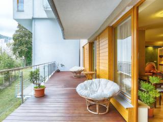 Comfortable Condo with Television and Balcony - Karlovy Vary vacation rentals
