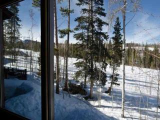 Best Value in Wildernest! Dog Friendly / Open Views of Back Country/Trails - Silverthorne vacation rentals