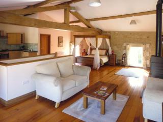 Beautiful Stone Gite near Vouvant - Vouvant vacation rentals