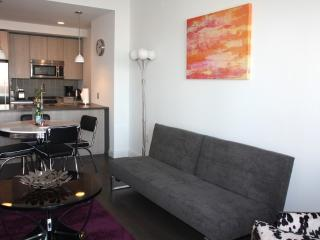 Bright and Lovely 1 Bedroom, 1 Bathroom Apartment in Jersey City - Jersey City vacation rentals