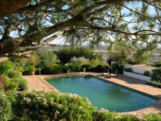 PORTUGAlL Algarve Charming house un the country - Paderne vacation rentals