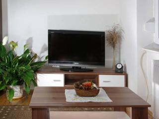 Nice Apartment with Internet Access and A/C - Zagreb vacation rentals
