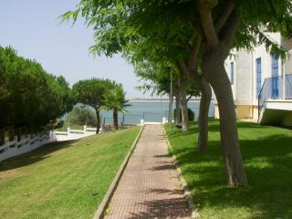 Sanlucar de Barrameda 50m to beach, cozy and calm - Sanlucar de Barrameda vacation rentals