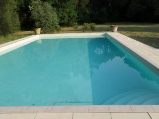 6 bedroom House with Patio in Vecchiano - Vecchiano vacation rentals