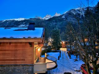 Beautiful 3 bedroom Chamonix Apartment with Internet Access - Chamonix vacation rentals