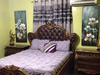Colorful Apt w/ Free WIFI & Cable - Santiago vacation rentals