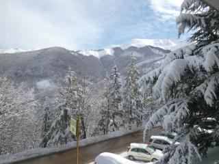 Bilocale Limone Piemonte quota 1400 - Limone Piemonte vacation rentals