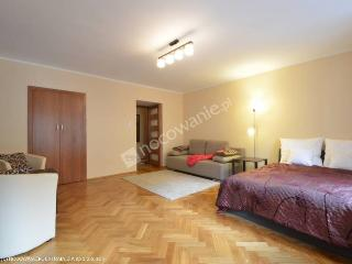 Quiet big studio in the very city center - Wroclaw vacation rentals
