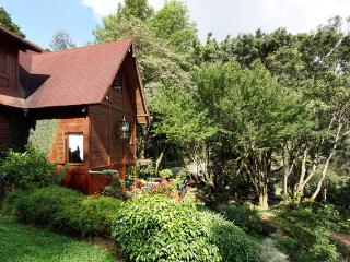 5 Birdwatching Mountain Suite Anturio Two Rooms - Cali vacation rentals