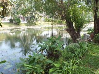 Andaman Residences - 152 Villa Heaven - Surin Beach vacation rentals
