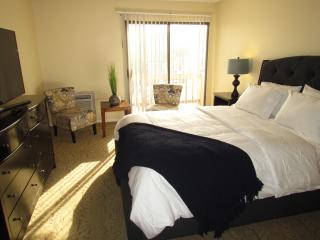 Fully Furnished Suite Next to Beverly Hills - Los Angeles vacation rentals