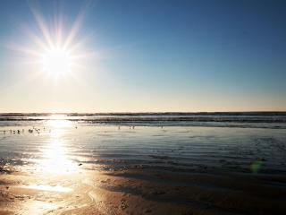 Beachwood: Ocean View Apartment 2 Full Beds - Copalis Beach vacation rentals