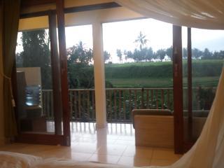LASAN MAS GUEST HOUSE - Mas vacation rentals