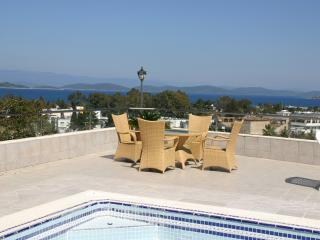 Torba Bodrum private swimming pool luxory villa - Torba vacation rentals