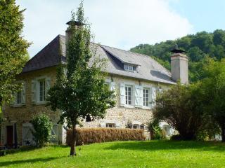 Au Moulin 1771 - holiday rental / Gite 3 ⭐️⭐️⭐️⭐️ - Monein vacation rentals