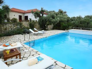 VILLA EMMY - Sea Front  & 10 mns walking  Gaios - Gaios vacation rentals