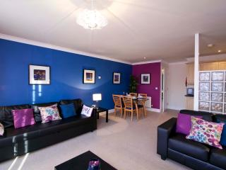 2 Bed + sofabed Apt parking WIFI University Area - Belfast vacation rentals