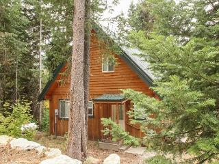 La Cabina in Lake Wenatchee, just 15 minutes to the Bavarian Village - Plain vacation rentals