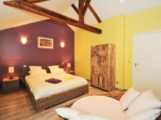 Vendangeur, La Loge (Epernay) - Moussy vacation rentals