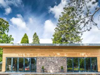 Contemporary Scottish lodge on Loch Lomond - Arden vacation rentals