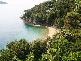 Paris House Skiathos (Kalamaki), Private Beach (7) - Kanapitsa vacation rentals