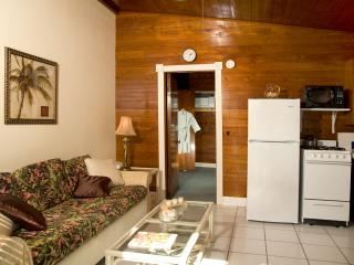 Nice Condo with Internet Access and Wireless Internet - Conch Key vacation rentals