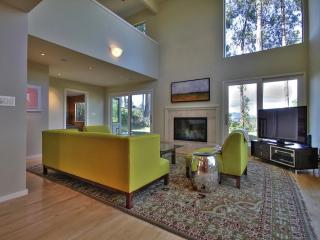 Beautiful 4 Bedroom Sausalito Home - Sausalito vacation rentals