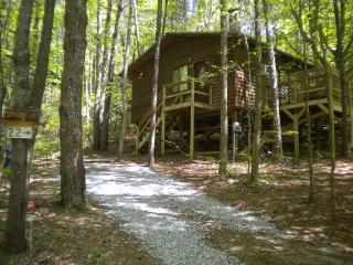 Cabin Fever - Enjoy an Affordable GetAway - Helen vacation rentals