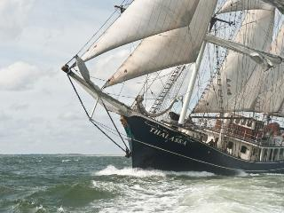 Cabins Available on a Tall Ship!!! - Amsterdam vacation rentals