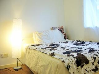 Nice double room in London, 1min to Westferry Stn - London vacation rentals