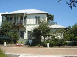 Beautiful 3 Bedroom Cottage On 30A Near Seaside-8 - Seaside vacation rentals