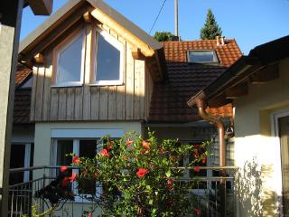 Double Room in Vogtsburg - spacious, comfortable, bright (# 2303) - Vogtsburg im Kaiserstuhl vacation rentals