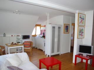 Ferien- und Messeappartement - nah an Nürnberg - Schwaig vacation rentals