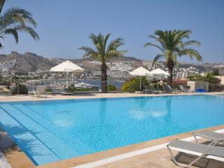 Firuze Villa - Gundogan vacation rentals