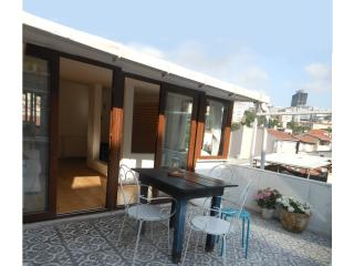 2 Terraces -  La Casa di Gioia in Galata - Istanbul vacation rentals