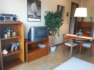 Nice Condo with Ceiling Fans and Elevator Access - Spotorno vacation rentals