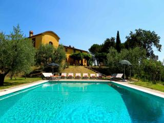 Tuscan Farmhouse and Winery on olive farm (11/17) - Casalguidi vacation rentals