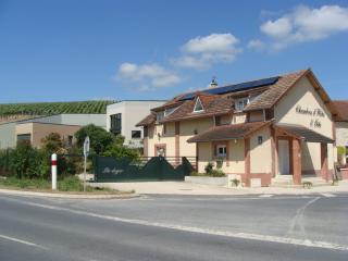 Gîte de La Loge (Epernay) - Moussy vacation rentals