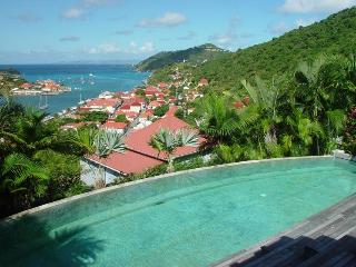 Gorgeous 8 bedroom Gustavia Villa with Internet Access - Gustavia vacation rentals