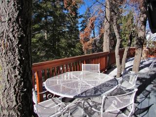 2 bedroom Cabin with Internet Access in Big Bear Lake - Big Bear Lake vacation rentals