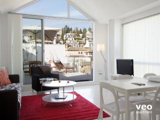 Plaza Nueva Loft 6. 2 bedrooms for 6, terrace - Granada vacation rentals
