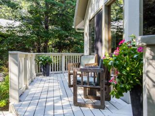 ADELC - Cozy Sunny Contemporary, Deck, Close to Activities - Vineyard Haven vacation rentals