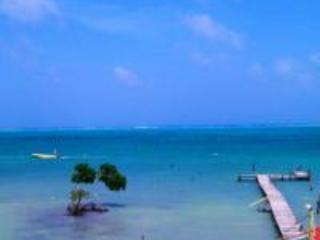 Beautiful Beach Front Condo Unit 10 - Caye Caulker vacation rentals