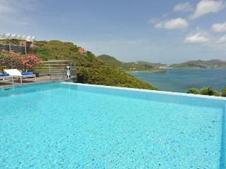 Stunning Cliffside Pool, Sunset Views, Ideal for Couples, Exclusive Pointe Milou Address - Pointe Milou vacation rentals