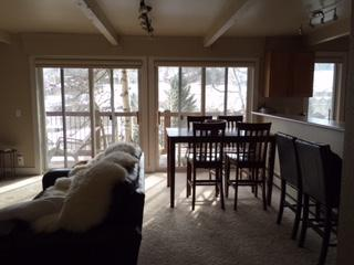 Nice Condo with Hot Tub and Television - Snowmass Village vacation rentals