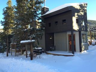 So close to the slopes - sleeps 17! - Winter Park vacation rentals