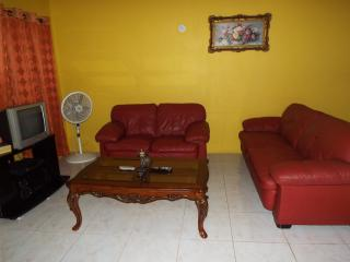 Cozy 2 Bedroom  Apt.#1 - Spanish Town vacation rentals