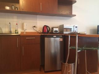 Nice Condo with Internet Access and Wireless Internet - Santiago vacation rentals